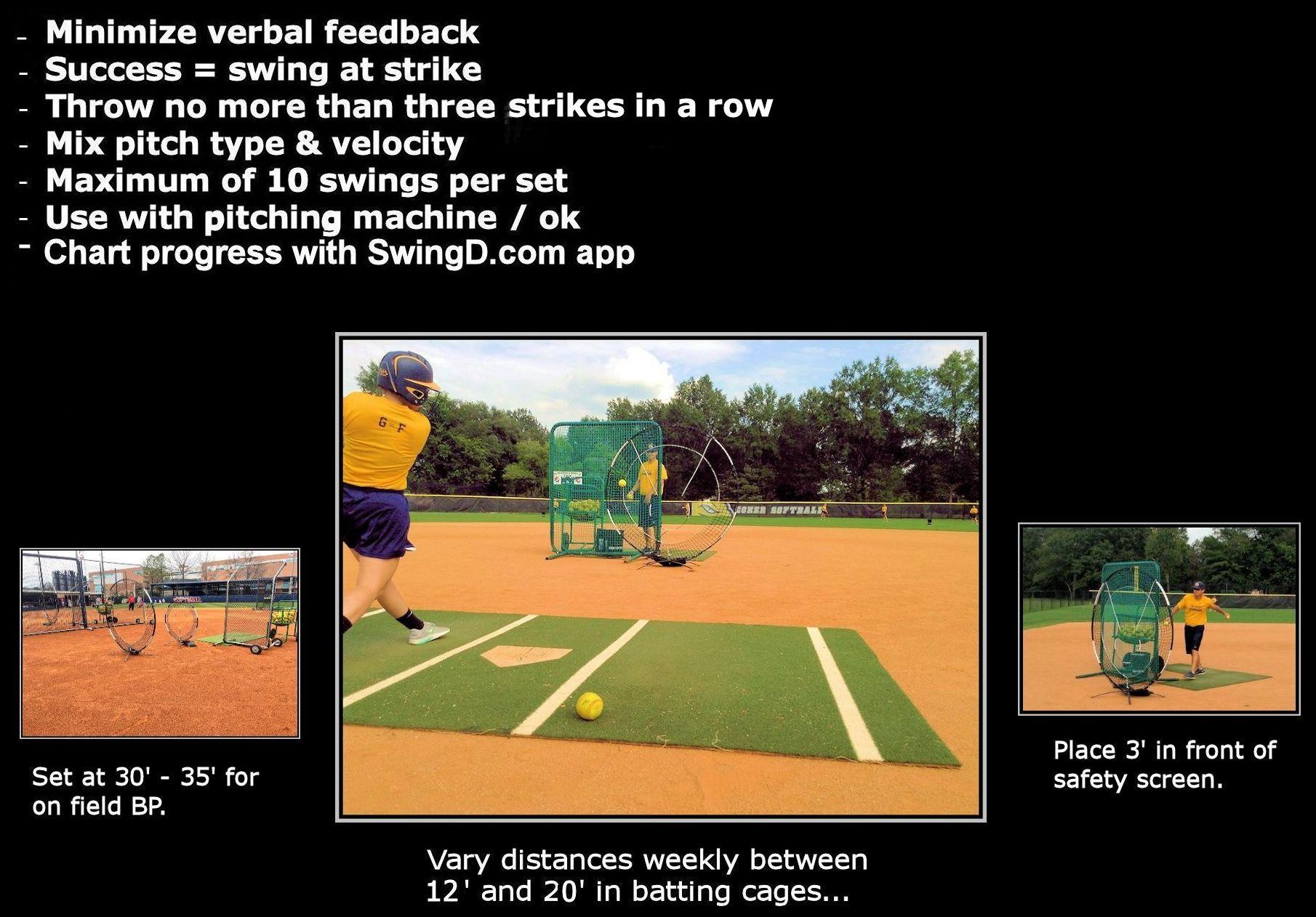 softball-back-v-flex-1.jpg